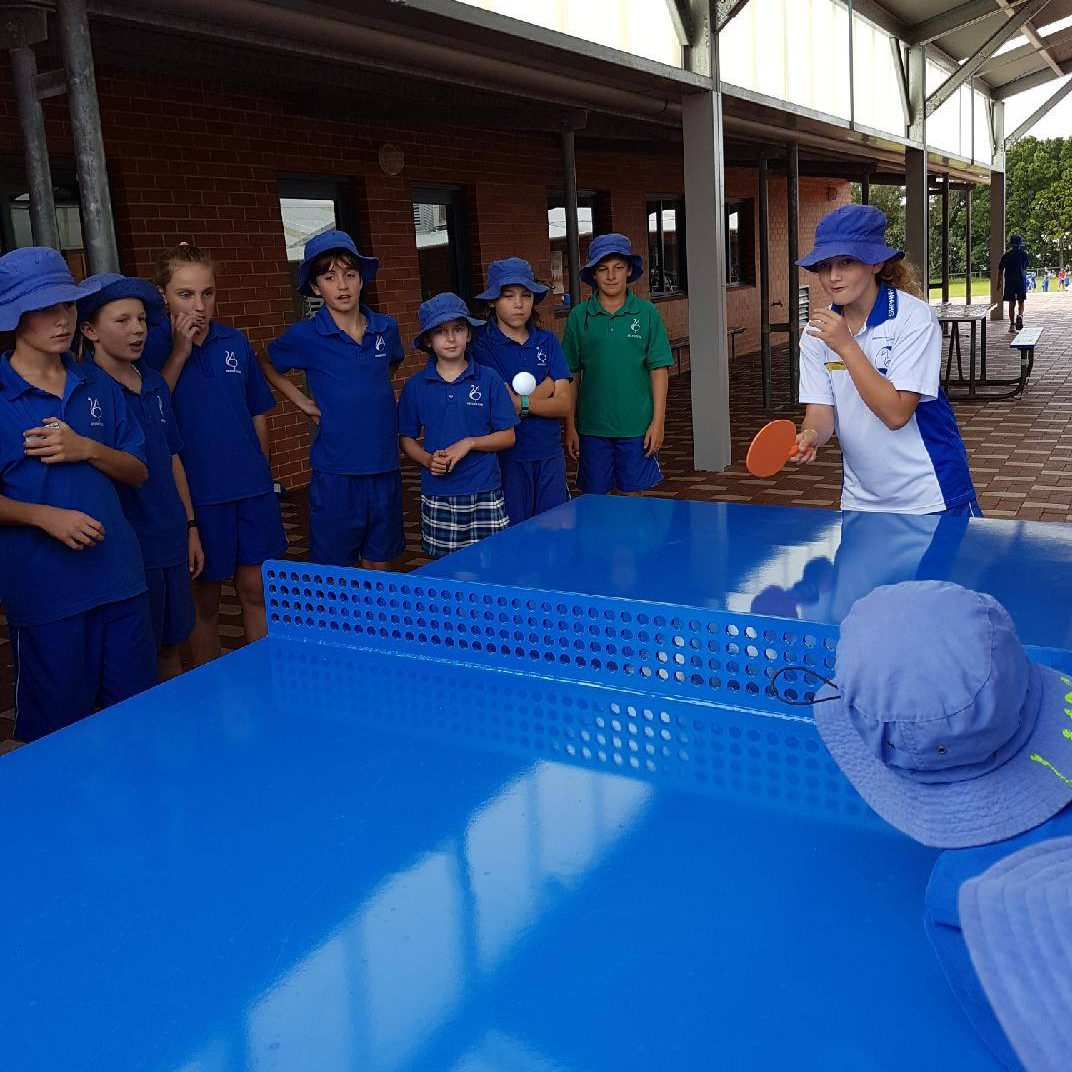 popp flagship ping pong table swanbourne primary school perth