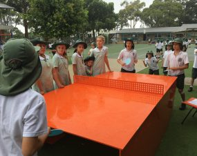 popp flagship outdoor table tennis table allambie heights school